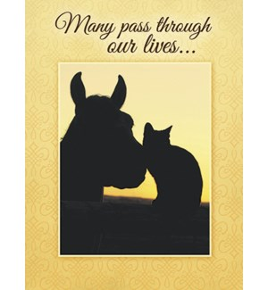 FR/Silhouette of horse and cat