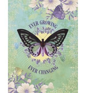 ED/Purple butterfly