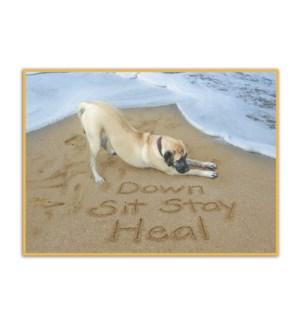 GW/Dog Down Sit Stay Heal