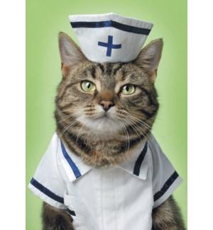 GW/Cat in nurse's uniform