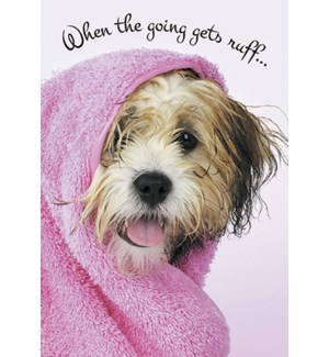 GW/Wet dog in pink towel