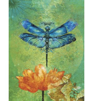 ENC/Dragonfly & flower