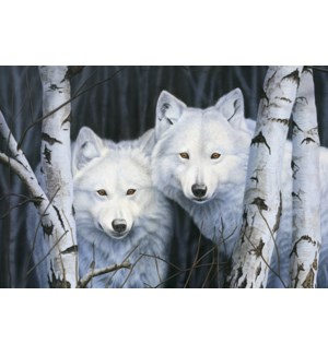 MAGNET/2 White wolves
