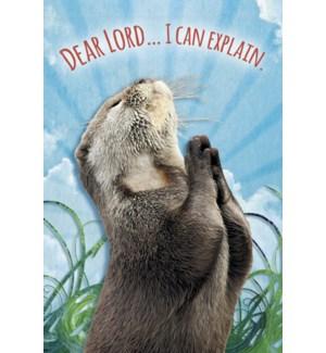 MAGNET/Marmot praying