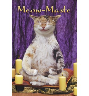 MAGNET/Cat in yoga pose