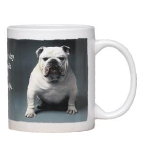 MUG/Bulldog