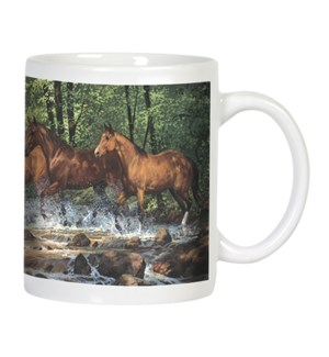 MUG/Horses running in river