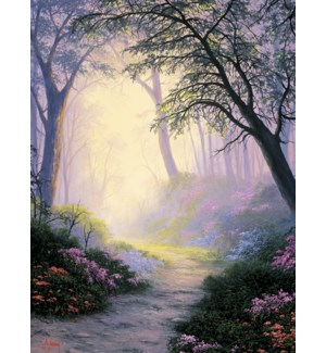 SY/Winding path with flowers