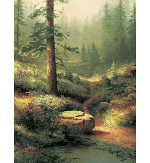 SY/Forest scene with sun