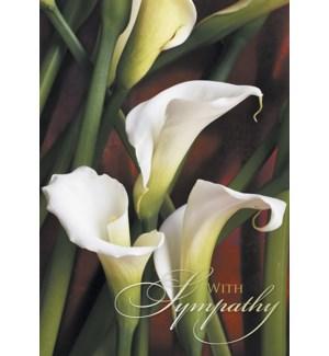 SY/White Callas