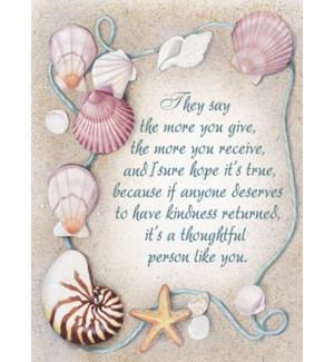 TY/shells and starfish