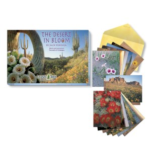 ASSORTMENT/Desert Bloom