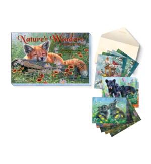 ASSORTMENT/Nature's wonders