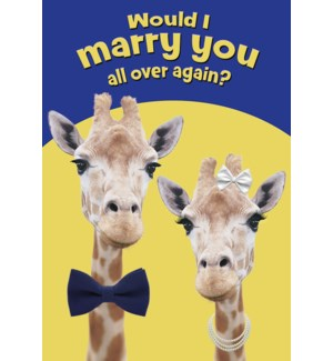 AN/Two giraffe with bow tie
