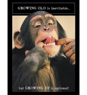 BD/Chimpanzee &  tongue