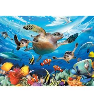 BD/Underwater sea turtle
