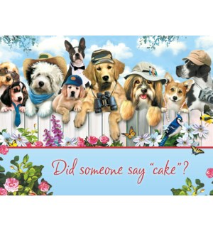 BD/Dogs on white picket fence