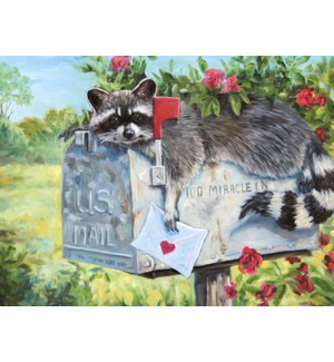 BD/Raccoon on top of mailbox