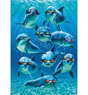 BD/Dolphins wearing sunglasses