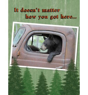 BD/Bear in driver's seat