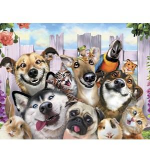 BD/Animals taking selfie