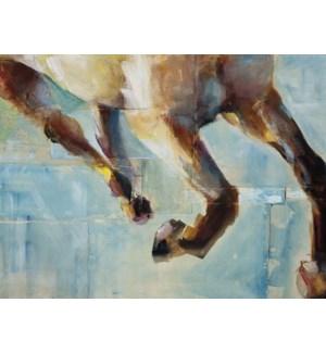 BL/Horse legs running