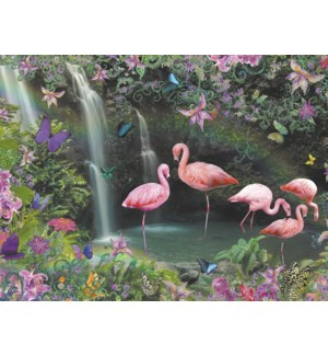 BL/Flamingos standing in water