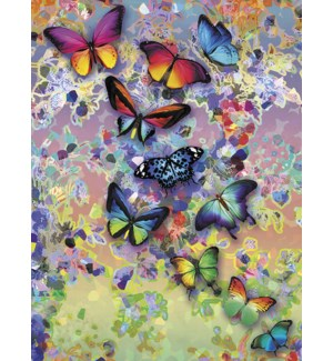 BL/Butterflies on holographic