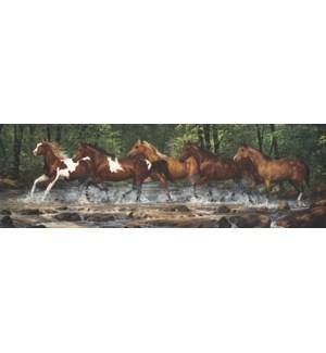 BM/Horses running