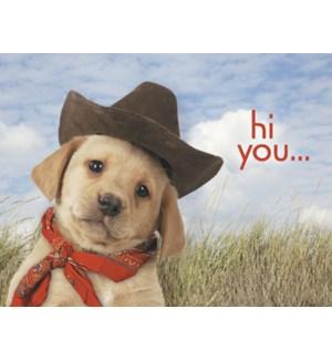 NOTECARD/Puppy cowboy hat