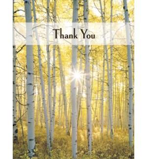 NOTECARD/Sunlight trees