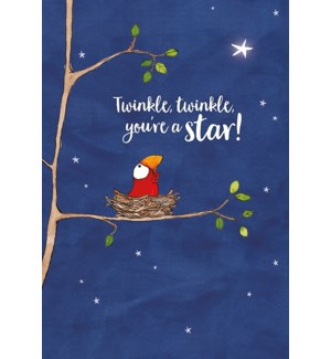 CO/Little bird looking at star