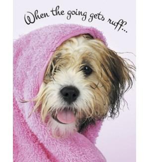 ENC/Wet dog in pink towel