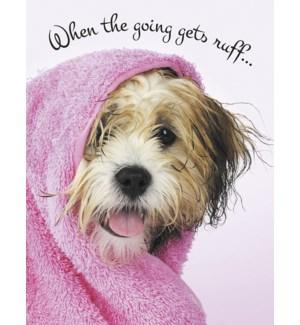 EN/Wet dog in pink towel