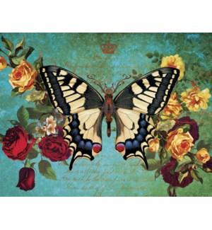 FR/Cream & blue butterfly