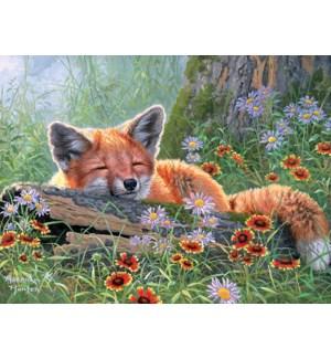 GW/Fox sleeping soundly