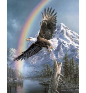 ENC/Eagle under a rainbow