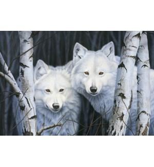 MAGNET/2 White wolves