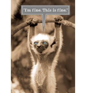 MAGNET/Lemur with blue eyes