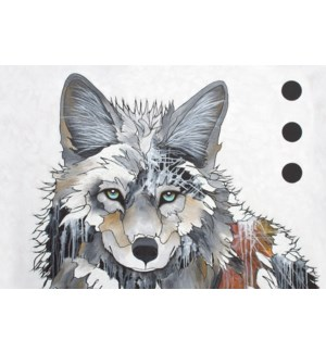 MAGNET/Wolf