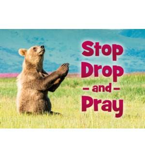 MAGNET/Bear praying in grass