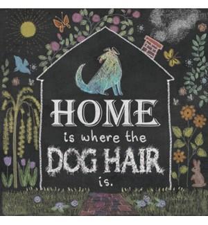 MAGNET/Dog house frame