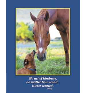 POSTER/Dog licks nose of horse