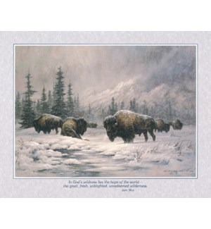 POSTER/Buffalos, snowy river