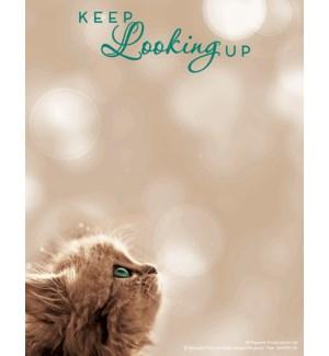SMNOTEPAD/Kitten looking up