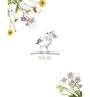 TY/Sketched bird