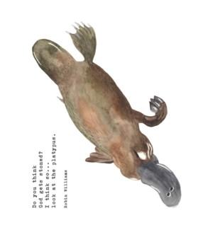 ED/Platypus