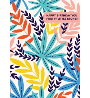 BD/Pretty Little Stoner