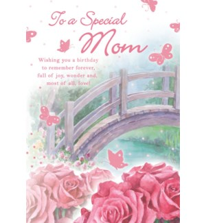 RBD/Special Mom