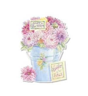 BD/Dahlia Blue Bucket